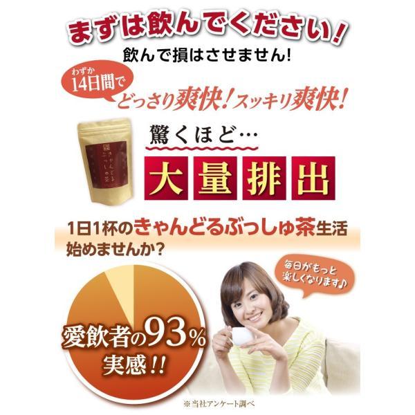 ダイエット 茶 キャンドルブッシュ ラズベリー 30包  送料無料|sazankaen|05