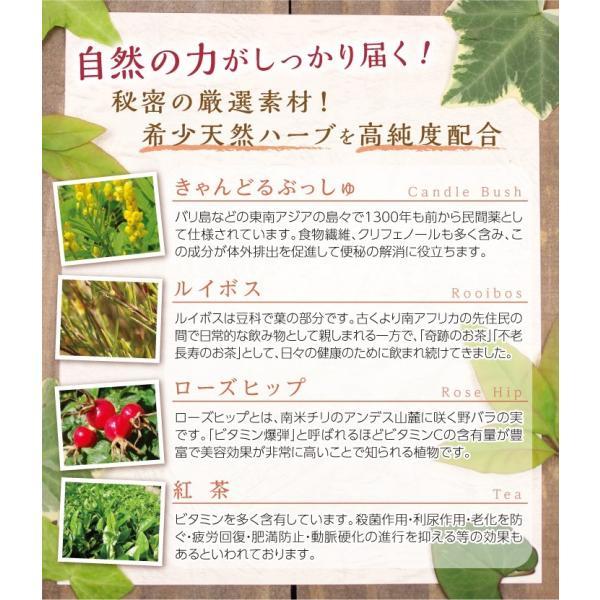 ダイエット 茶 キャンドルブッシュ ラズベリー 30包  送料無料|sazankaen|06
