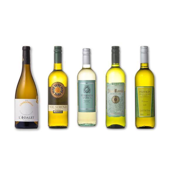 金賞受賞入り デイリー白ワイン 5本セット 送料無料※(本州のみ) あすつく [ケース販売]|se-sake