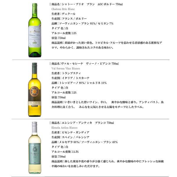 金賞受賞入り デイリー白ワイン 5本セット 送料無料※(本州のみ) あすつく [ケース販売]|se-sake|02