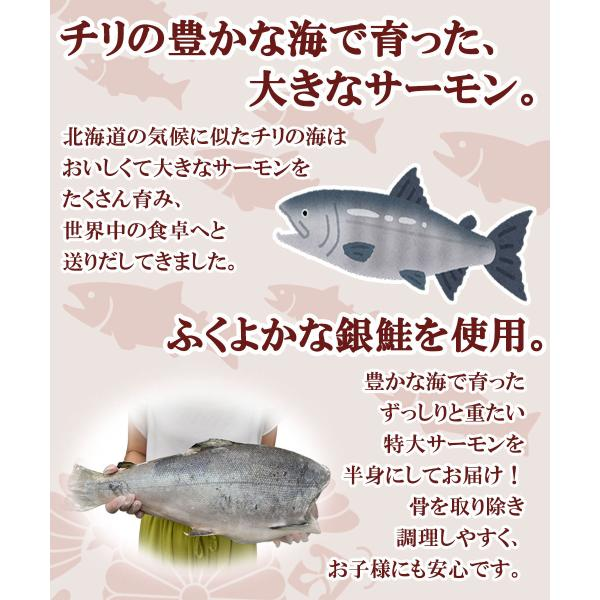 サーモン 刺身 銀鮭 半身 1kg超|seafoodhonpo88|03
