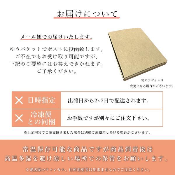 イカ飯 セット 北海道 土産 ひとくち いかめし いか飯になれなかったいか seafoodhonpo88 05