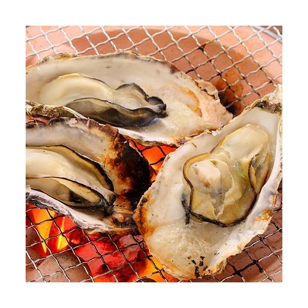 広島産 殻付き牡蠣 10個 カキ かき 貝 シーフード 冷凍 BBQ バーベキュー 国産 ギフト 海鮮 魚介類|seafoodhonpo88|02