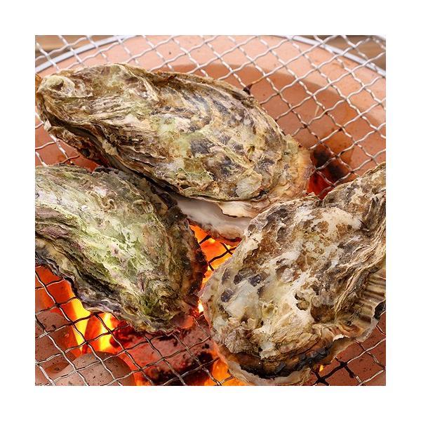 広島産 殻付き牡蠣 10個 カキ かき 貝 シーフード 冷凍 BBQ バーベキュー 国産 ギフト 海鮮 魚介類|seafoodhonpo88|03
