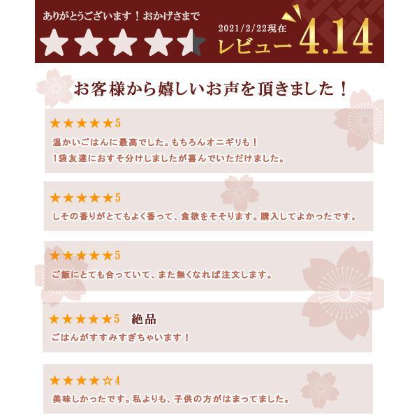 ひじき ごはん しそ風味 ふりかけ 3袋|seafoodhonpo88|03