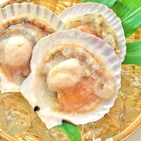 ホタテ 殻付き 北海道産 10枚|seafoodhonpo88|09