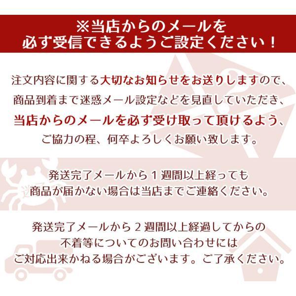 ホタテ 殻付き 北海道産 10枚|seafoodhonpo88|10