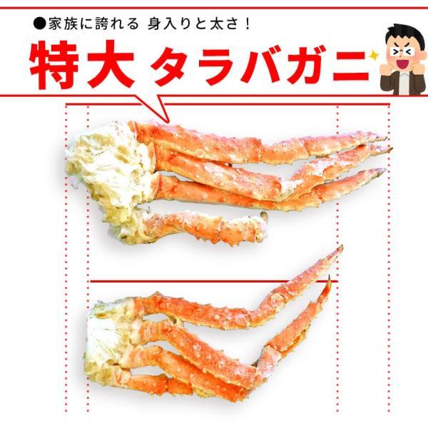 タラバガニ 特大 かに 足 1kg|seafoodhonpo88|02