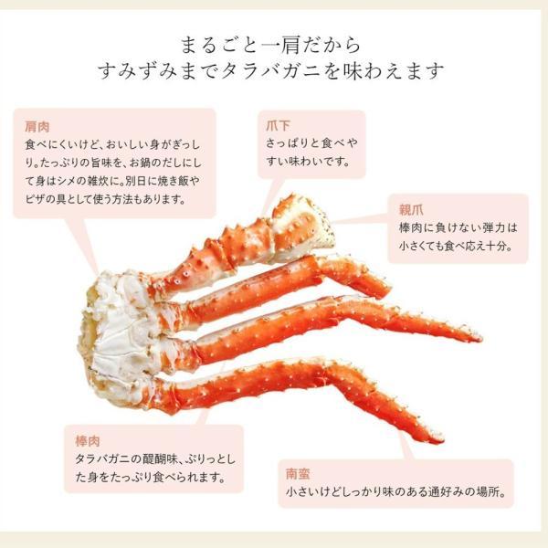 タラバガニ 特大 かに 足 1kg|seafoodhonpo88|09