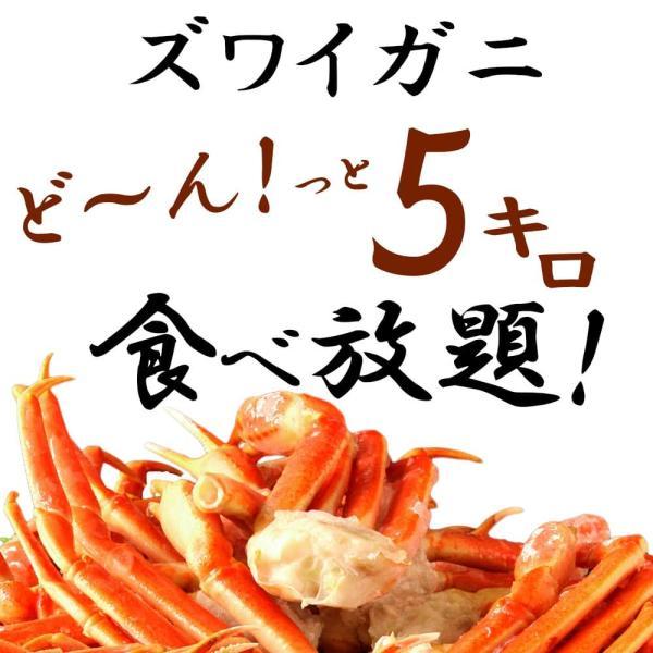 かに カニ 蟹 ズワイガニ 特大 ずわいがに 訳あり ボイル ズワイ蟹 肩 脚 爪 5kg 冷凍 送料無料|seafoodhonpo88|03