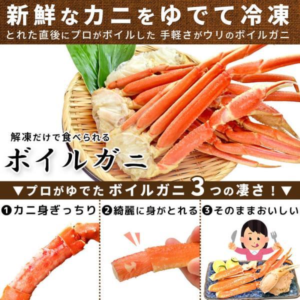 カニ ズワイガニ  ボイル カニ 足 1kg|seafoodhonpo88|03