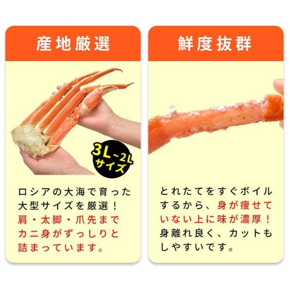 カニ ズワイガニ  ボイル カニ 足 1kg|seafoodhonpo88|04