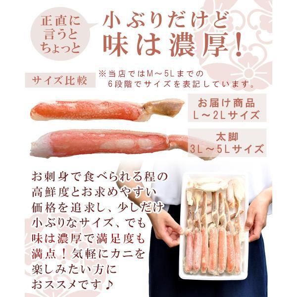 かに ズワイガニ 刺身 ボイル ハーフポーション|seafoodhonpo88|09