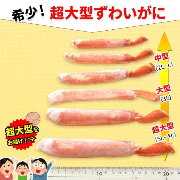 カニ 訳あり ズワイガニ ハーフポーション 2.7kg|seafoodhonpo88|03