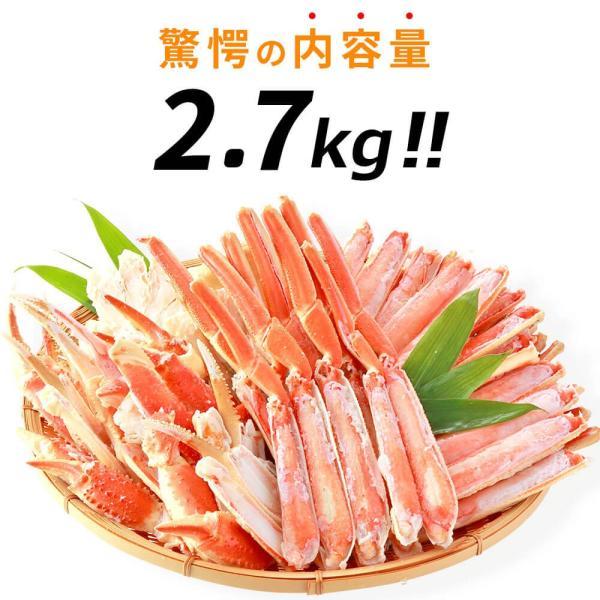 カニ 訳あり ズワイガニ ハーフポーション 2.7kg|seafoodhonpo88|05