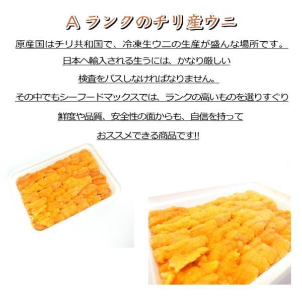 生食用うに 冷凍  お刺身用 100g  チリ産 ブランチ ・冷凍うに【ブランチ】・|seafoodmax|02
