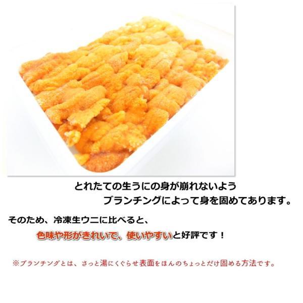 生食用うに 冷凍  お刺身用 100g  チリ産 ブランチ ・冷凍うに【ブランチ】・|seafoodmax|04