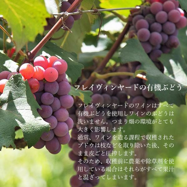 オーガニックワイン フレイヴィンヤード カベルネソーヴィニヨン 750ml アメリカ産 seedleaf 03