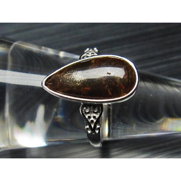 アンモライト  指輪 (16号) t674-1973