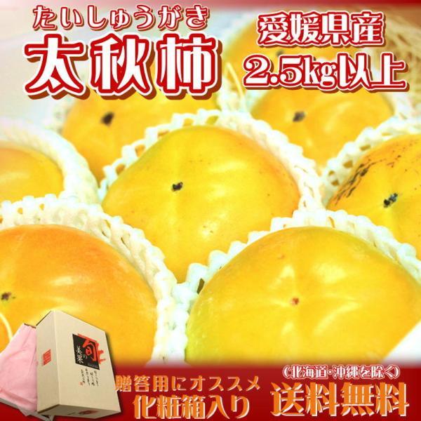 化粧箱 愛媛県産 太秋柿  約2.5kg 送料無料(一部地域を除く)