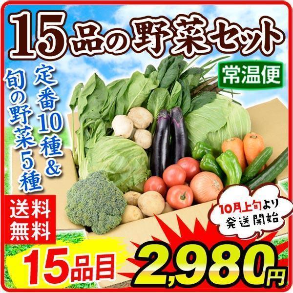 野菜15品目セット