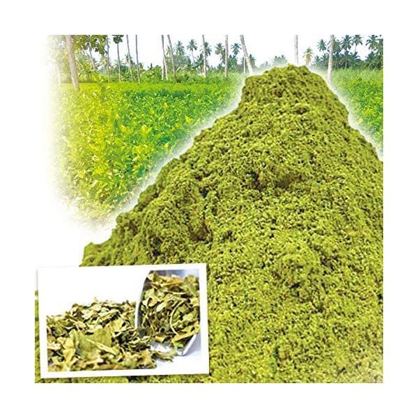 桑の葉powder