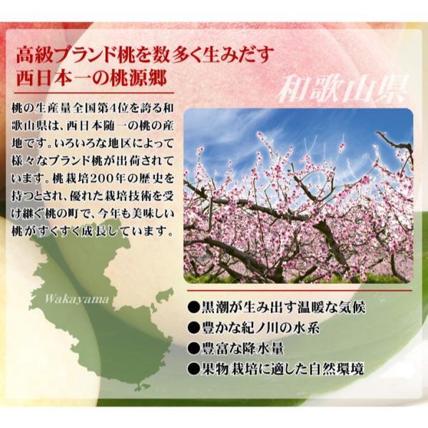 桃 和歌山産 和歌山の美味しい桃 4kg 1箱 送料無料 ご家庭用【数量限定】 seikaokoku 04