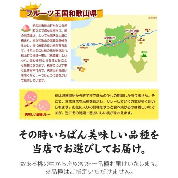 桃 和歌山産 和歌山の美味しい桃 4kg 1箱 送料無料 ご家庭用【数量限定】 seikaokoku 05