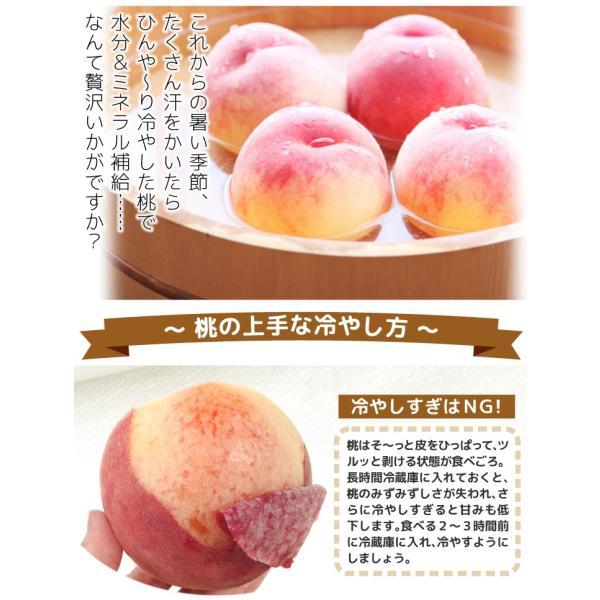 桃 和歌山産 和歌山の美味しい桃 4kg 1箱 送料無料 ご家庭用【数量限定】 seikaokoku 06