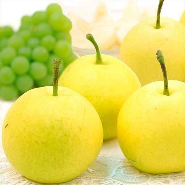 梨 青森南部町産 ご家庭用 八雲梨 4kg 1箱 送料無料 やくも梨|seikaokoku