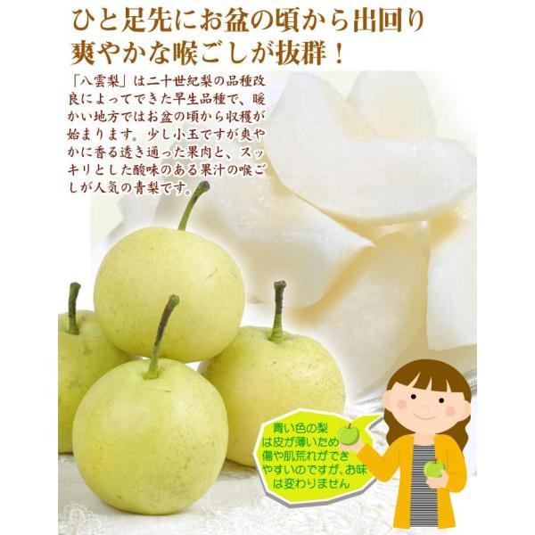 梨 青森南部町産 ご家庭用 八雲梨 4kg 1箱 送料無料 やくも梨|seikaokoku|04