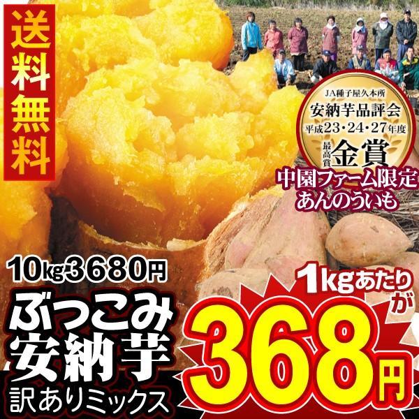 安納芋 種子島産 ぶっこみ安納芋 訳ありミックス 10kg 1組 送料無料 無選別 特別版【数量限定】【早割】|seikaokoku
