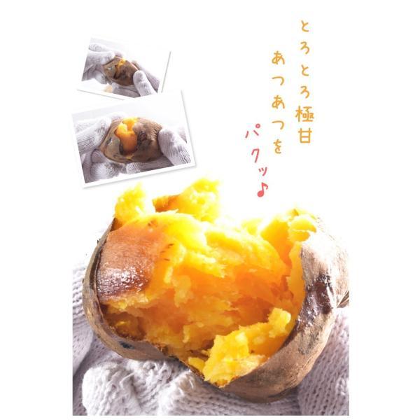 安納芋 種子島産 ぶっこみ安納芋 訳ありミックス 10kg 1組 送料無料 無選別 特別版【数量限定】【早割】|seikaokoku|06