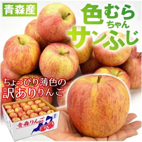 りんご 色むらふじりんご 10kg1箱 青森県産 ご家庭用 訳あり 林檎 食品 グルメ 現在出荷中 果物 seikaokoku 03