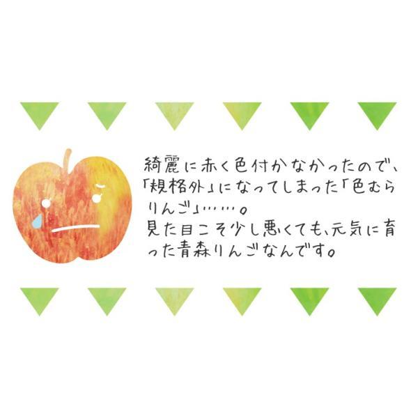 りんご 色むらふじりんご 10kg1箱 青森県産 ご家庭用 訳あり 林檎 食品 グルメ 現在出荷中 果物 seikaokoku 05