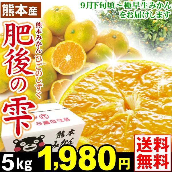 肥後の雫5kg