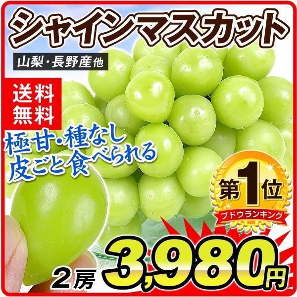 ぶどう シャインマスカット 2房 山梨・長野県産他 ご家庭用 葡萄 ブドウ食品|seikaokoku