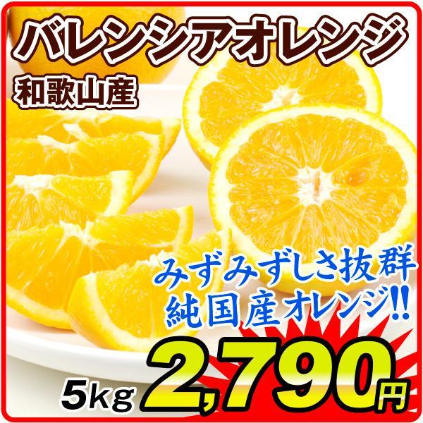 紀南 バレンシアオレンジ