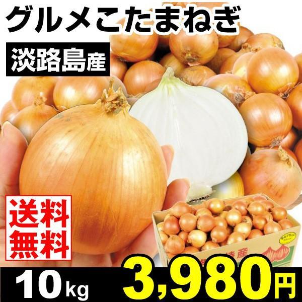 たまねぎ 淡路島産 グルメこたまねぎ 10kg 玉ねぎ 野菜 玉葱 タマネギ 食品 グルメ 国華園|seikaokoku