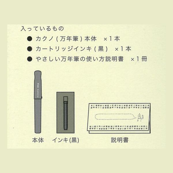 PILOT FKA-1SR-NCEF 万年筆 カクノ 透明軸 EF(極細字)|seirindou|05