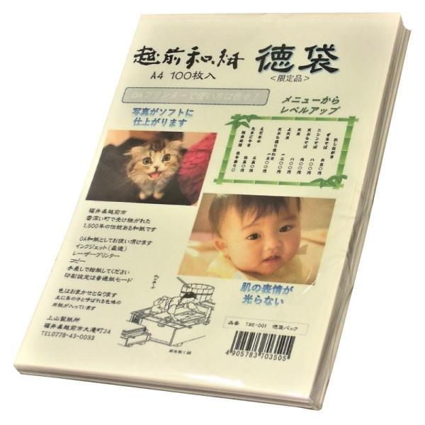 越前和紙  鳥の子 とりのこ 「徳袋」 厚口 A4 100枚入り TME-001|seirindou
