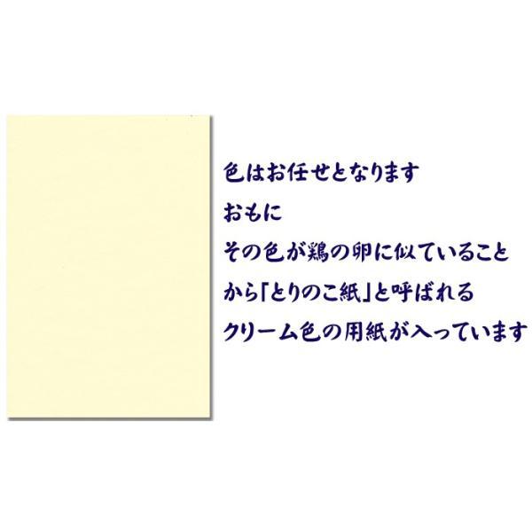 越前和紙  鳥の子 とりのこ 「徳袋」 厚口 A4 100枚入り TME-001|seirindou|02