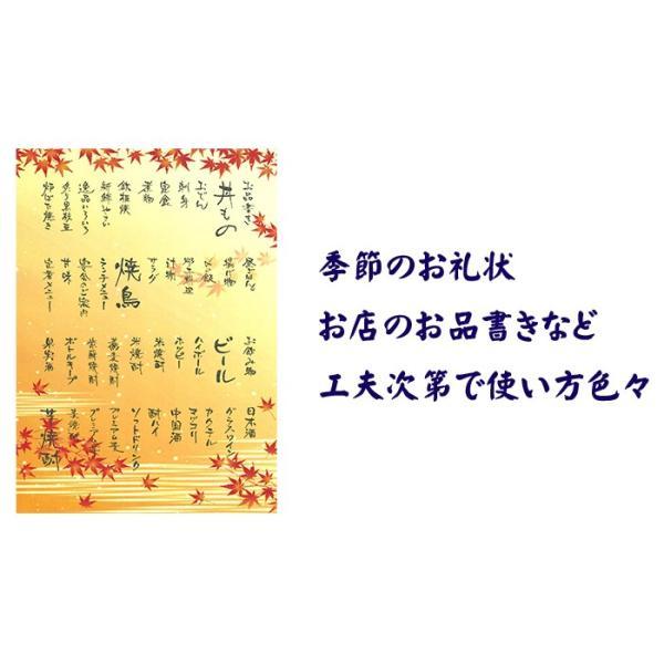 越前和紙  鳥の子 とりのこ 「徳袋」 厚口 A4 100枚入り TME-001|seirindou|03
