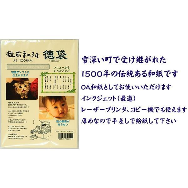 越前和紙  鳥の子 とりのこ 「徳袋」 厚口 A4 100枚入り TME-001|seirindou|05