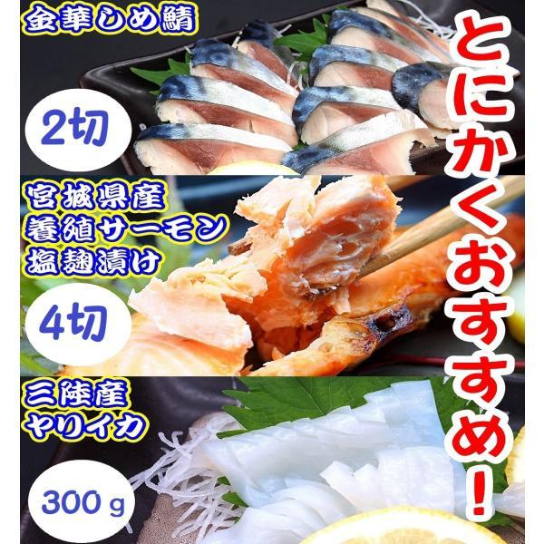 SEISHINおススメセット 一番人気 簡単 惣菜 冷凍 時短 贈答用 熨斗