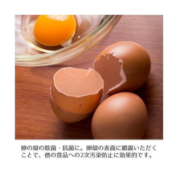 アルコール 除菌 スプレー パストリーゼ77 1L スプレーヘッド無|select-coco10|04