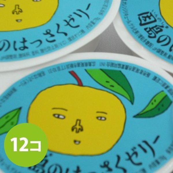 因島 はっさくゼリー 12個セット 八朔果肉入り 果物ゼリー フルーツゼリー 贈り物 スイーツ ギフト