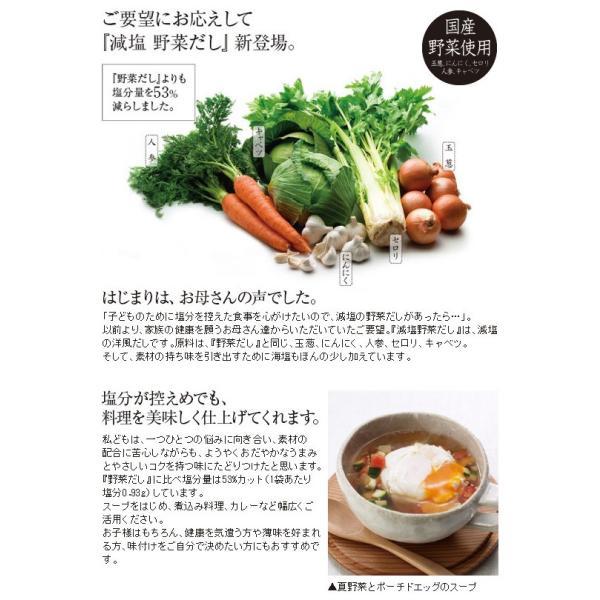 久原本家 茅乃舎 減塩 野菜だし(8g×22袋入)|selene|02