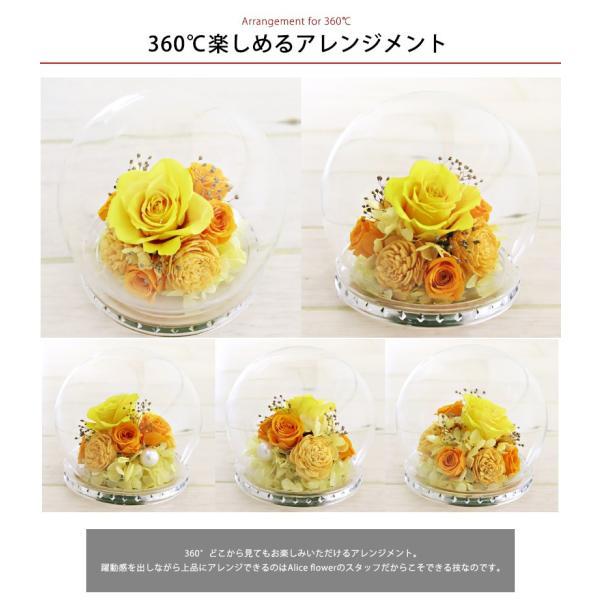 あすつく 新品 プリザーブドフラワー ドーム 御誕生日ガラスドーム ローズ バラ プリザーブド アレンジ 花|selene|04