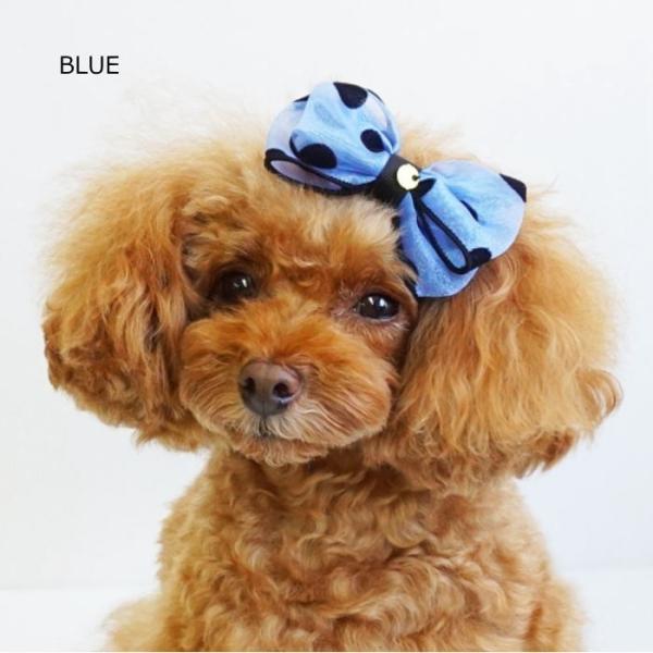犬 ペット ヘアアクセサリー ネオンドットリボンクリップ 小型犬 中型犬 髪飾り